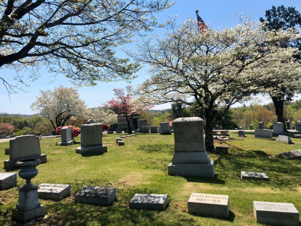 SET Cemetery 11