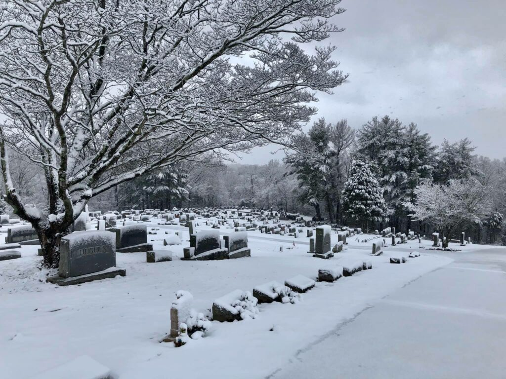 SET Cemetery 3