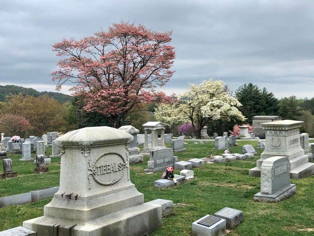 SET Cemetery 5