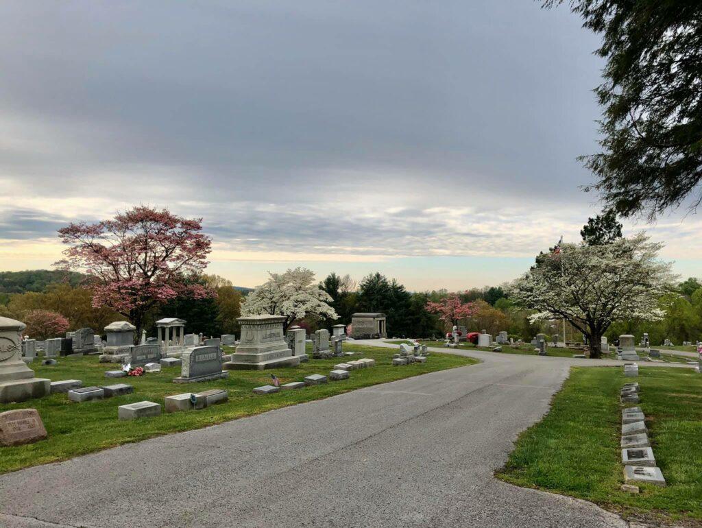 SET Cemetery 7 1