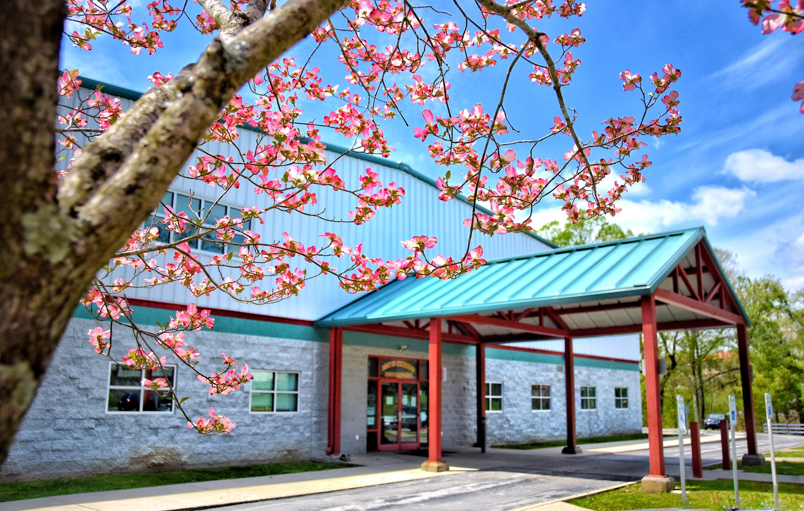 recreation center building with pink blooming tree in foreground