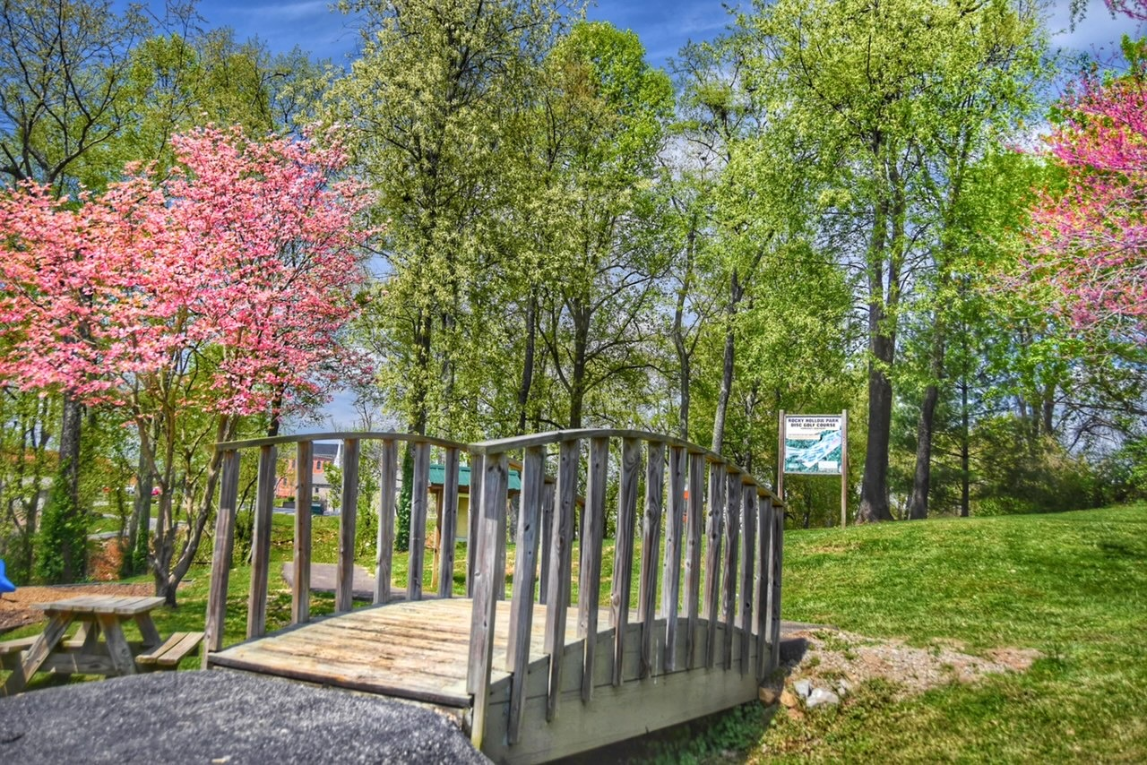 bridge and picnic table in park with pink blooming trees in the background